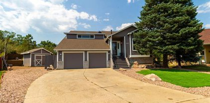 1405 Witches Willow Lane, Colorado Springs