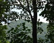 LOT 6 Laurel Mountain, Brasstown image
