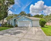 3713 Hollow Wood Drive, Valrico image