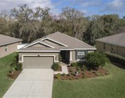 2815 Holly Bluff Court, Plant City image