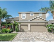 13225 Fox Glove Street, Winter Garden image