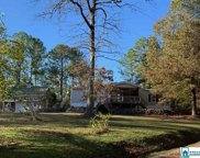 13 Saddle Creek Dr, Pell City image
