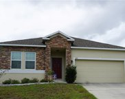 3517 Spring Creek Rd, Dundee image