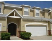 18006 New Wales Place, Tampa image