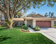3534 Player Drive, New Port Richey image