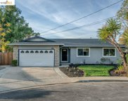 3860 Riverview Ct, Concord image