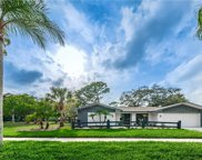 3514 Glossy Ibis Court, Palm Harbor image