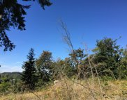 14516 OK Mill Rd, Snohomish image