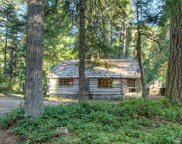132 Silver Springs USFS, Greenwater image