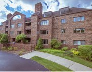 316 Beaver Street Unit 204, Sewickley image