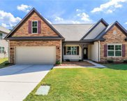 10733  Cove Point Drive, Charlotte image