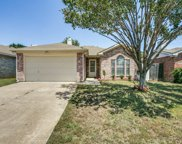 5919 Rock Meadow, Arlington image