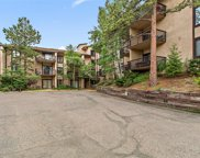 31270 John Wallace Road Unit 208, Evergreen image