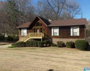 749 Chestnut Dr, Pinson image