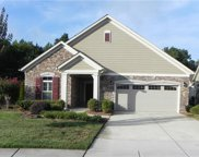 1007  Quincy Hollow Drive, Stallings image