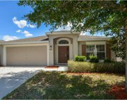 459 Painted Leaf Drive, Brooksville image
