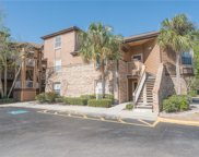 494 N Pin Oak Place Unit 302, Longwood image