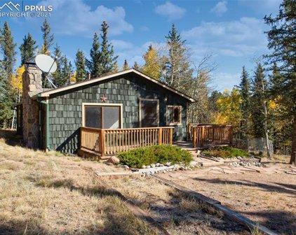 589 W Lake Drive, Divide