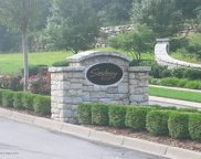 66 Sanctuary Bluff Ln, Louisville image