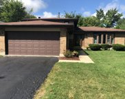7050 Foster Road, Downers Grove image