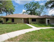 277 Tiger Lily Court, Altamonte Springs image