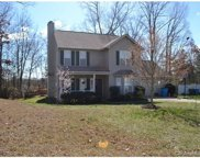 125 Shade Tree, Fort Mill image