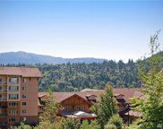 142 Cougar Ridge Rd NW Unit 1304, Issaquah image