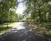 11770 Colyell Dr, Walker image