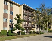 650 Murray Lane Unit 211, Des Plaines image