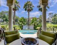 20 Castlebridge  Court, Hilton Head Island image