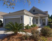 101 Spring Beauty Drive, Bluffton image