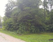 Lot 19 Pine Road, Pikeville image