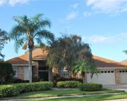 730 Belted Kingfisher Drive N, Palm Harbor image