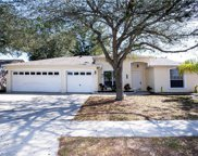 11217 Andy Drive, Riverview image