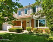 60 Chestnut Terrace, Buffalo Grove image