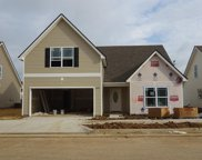 4609 Springstead Trail, Lot 114, Antioch image