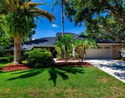 16106 Ancroft Court, Tampa image