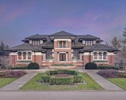 111 Singletree Road, Orland Park image