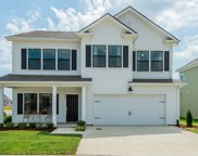 905 Carraway Ln, Spring Hill image