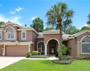 12006 Marblehead Drive, Tampa image