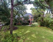 29 Angel Oak Dr., Pawleys Island image