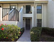 4638 Weybridge Unit 11, Sarasota image