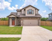15419 Anna, Lindale image