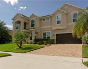 2313 Mountain Apple Way, Apopka image