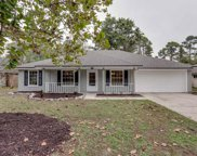 3427 DEERFIELD POINTE DR, Orange Park image