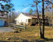 9767 County Road 459, Birch Tree image