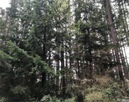 11308 Admiralty Wy, Anderson Island image