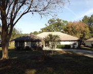 19725 Sw 93rd Place, Dunnellon image