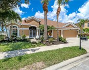 305 Spider Lily Ln, Naples image