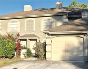 14131 Trouville Drive, Tampa image